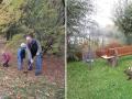 pflanzaktion-2012-isingerode-und-beuchte