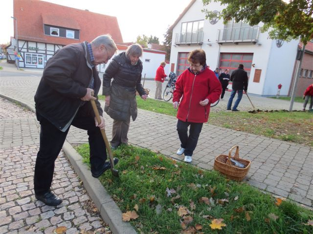 krokusspflanzaktion-2013-02