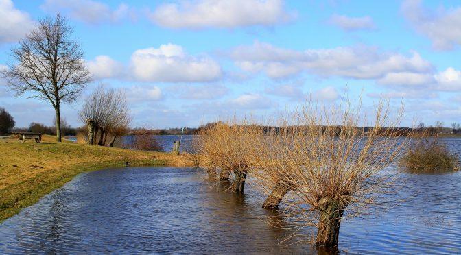 Anfrage zum Hochwasserschutz-Wall in Schladen